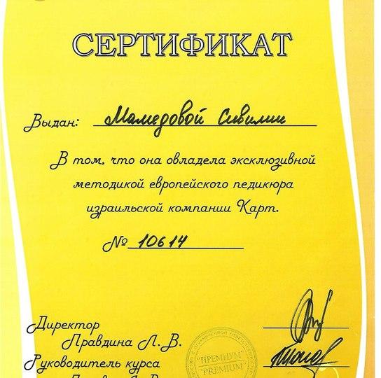 Мастер ногтевого сервиса Мамедова Севиля-2